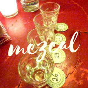 mezcal tasting MEXICO CITY PRIVATE TOUR Mexico city Tour AWESOME