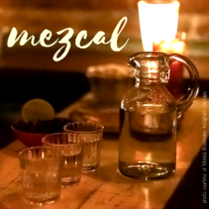 what to do in mexico city private mezcal tasting