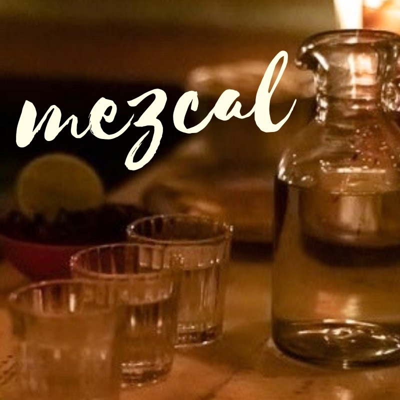 best mezcal education in mexico city