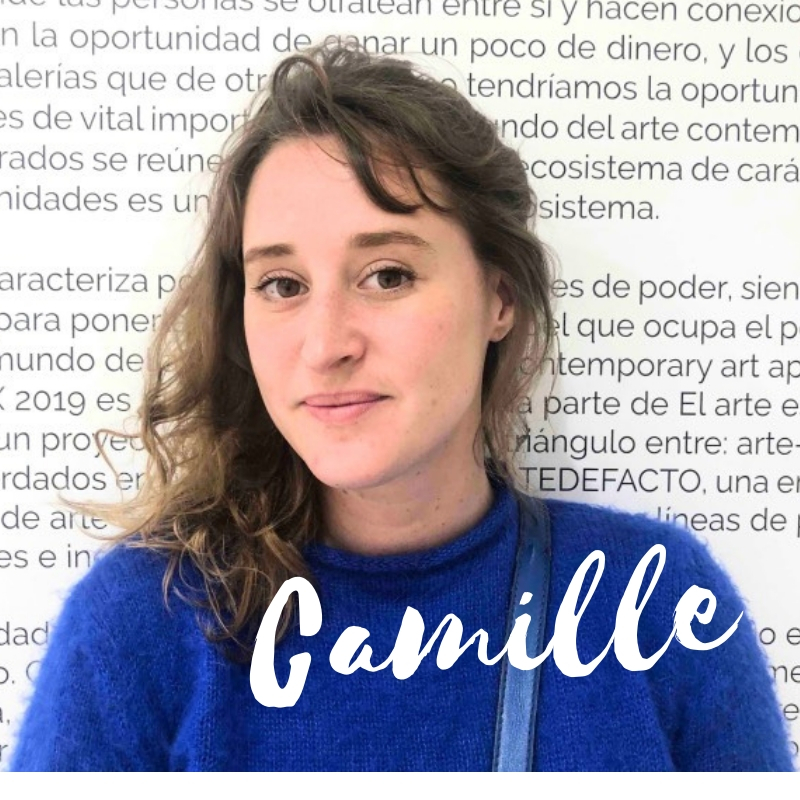mexico guide camille francophone